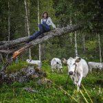 Ulrika och kor